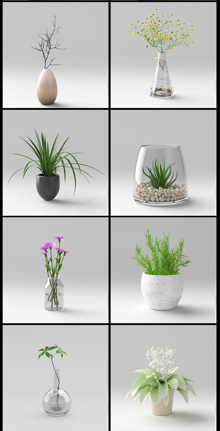 C4D室内植物盆栽oc渲染家居多肉绿植模型渲染带材质贴图