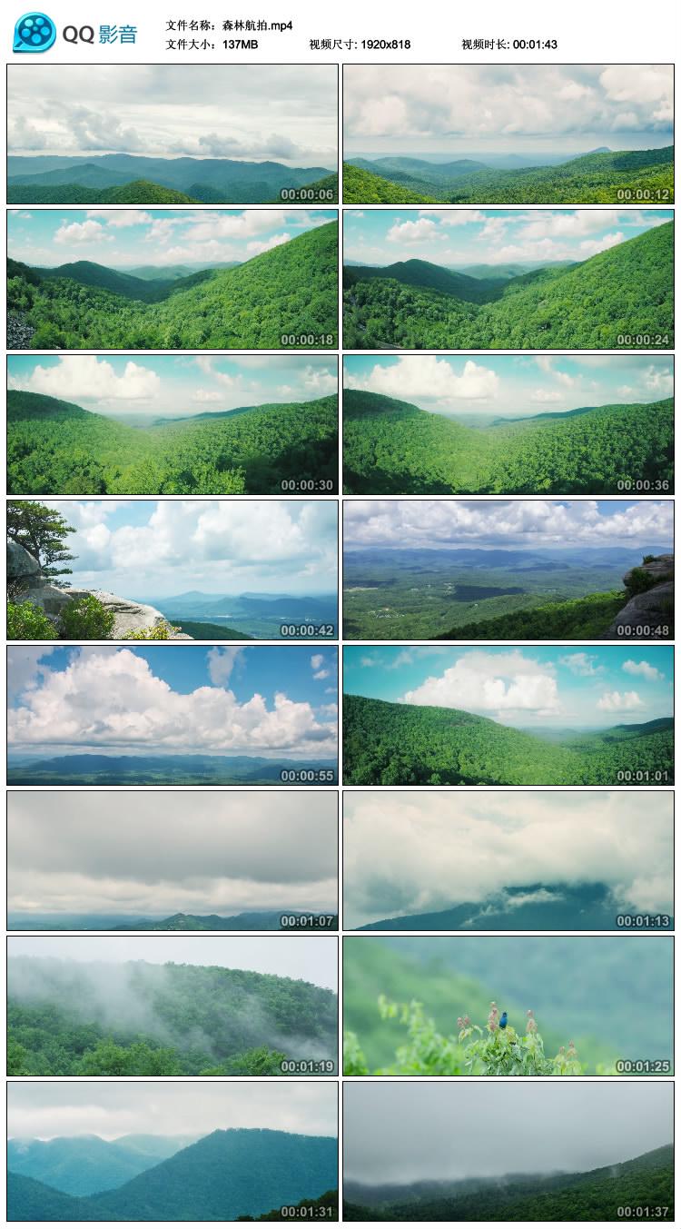 森林公园小清新房地产绿色环保唯美风景大自然高清实拍视频素材