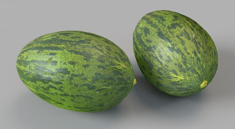 哈密瓜凤梨柠檬苹果牛油果猕猴桃荔枝石榴梨桔芒果瓜C4D模型